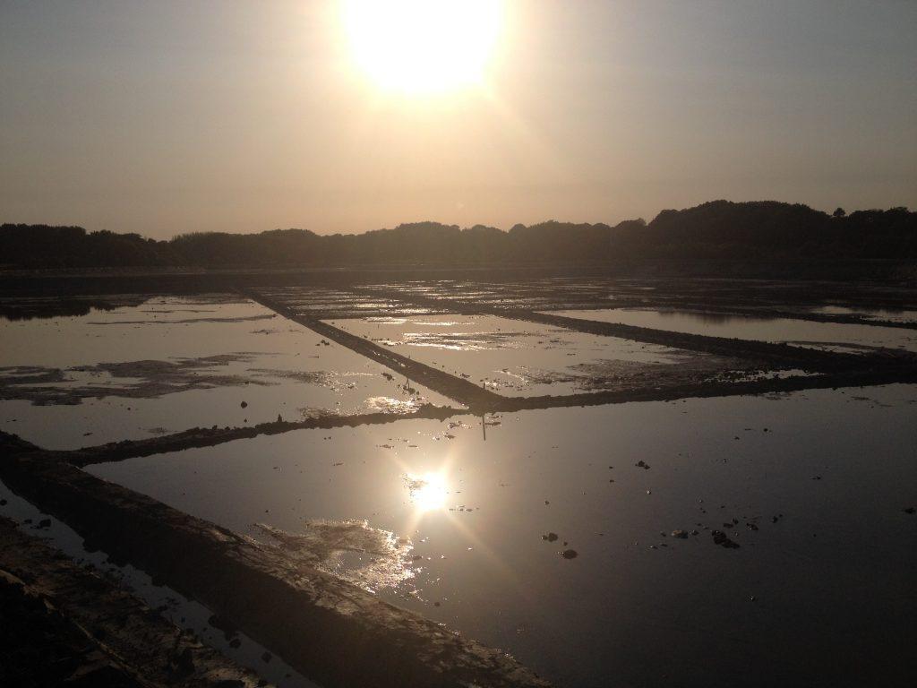 saline au coucher du soleil