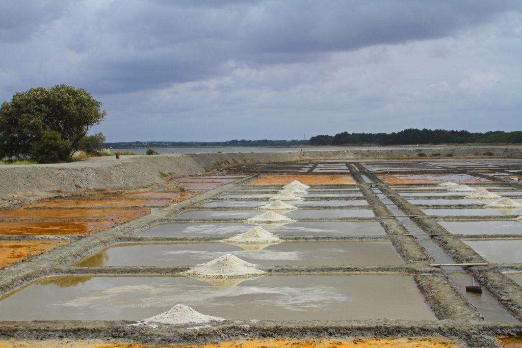 saline de truscat oeillets et sel