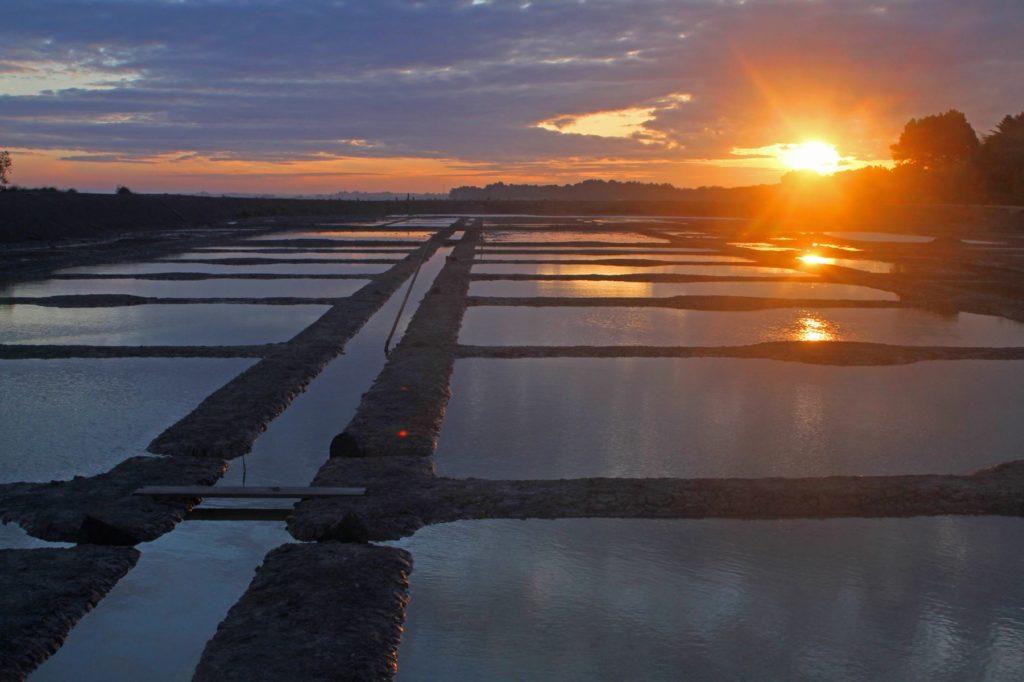 lever de soleil sur saline